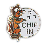 CHIP-IN PINS